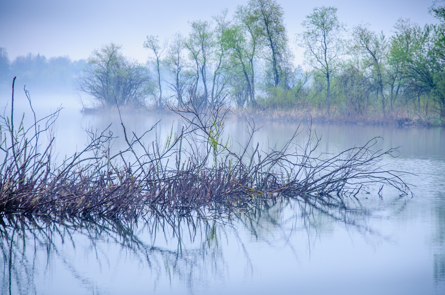Mist over the St. Lawrence River, Ontario, Canada